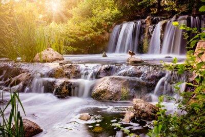 Naklejka Wodospad o zachodzie słońca z kaczki krzyżówki