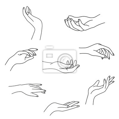 Naklejka Woman's hand collection line. Vector Illustration of female hands of different gestures - victory, okay. Lineart in a trendy minimalist style. Logo design, hand cream, nail Studio, posters, cards.