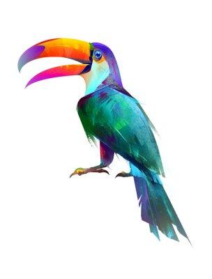 Naklejka wyciągnąć odizolowane jasny ptak siedzi Tukan boku