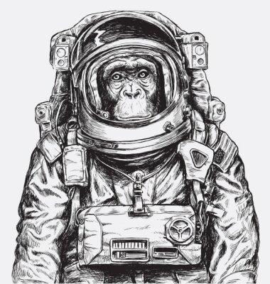 Naklejka Wyciągnąć rękę wektor Monkey Astronaut