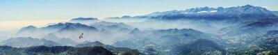 Naklejka Wysokie góry z sępy płowe we mgle (Picos de Europa, Asturia, Hiszpania)