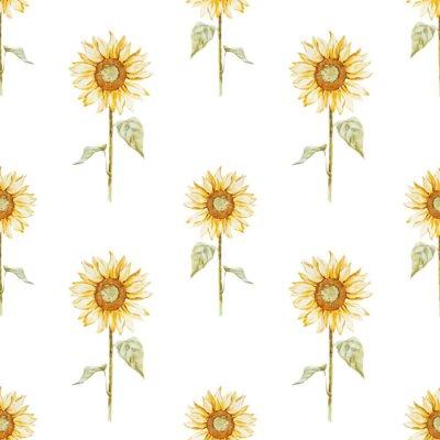 Naklejka Wzór akwarela słonecznika