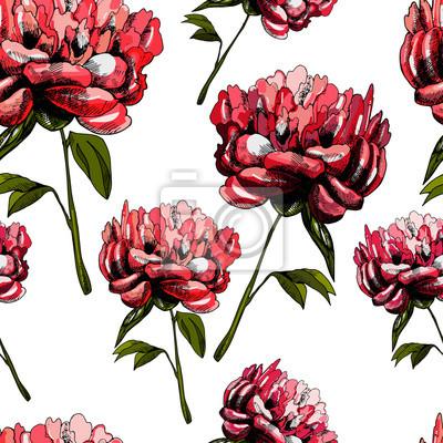Wzór z kwiatów piwonii piękne