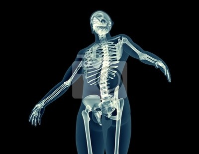 Naklejka x-ray image of a human body