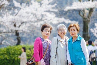 Naklejka 日本人シニア女性 アウトドア 春