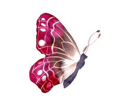 Naklejka 바틱 염색 기법 으로 그려진 나비