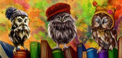 Naklejka Совы и книги