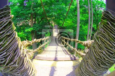 吊り橋を見下ろす