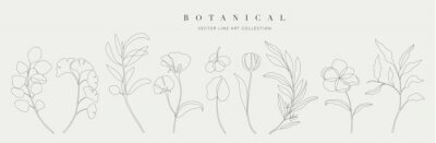 Naklejka Botanical arts. Hand drawn continuous line drawing of abstract flower, floral, ginkgo, rose, tulip, bouquet of olives. Vector illustration.