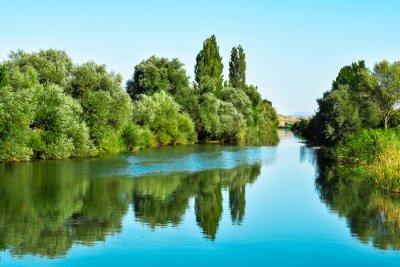 Naklejka Nehir suları ve ağaçların yansıması
