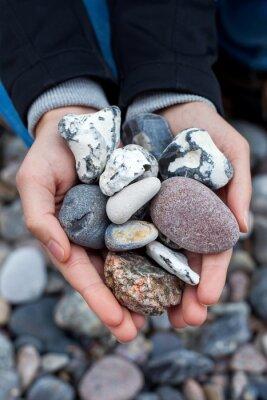 Naklejka Steine sammeln