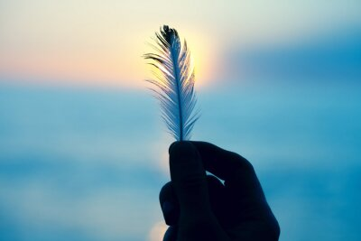 Naklejka Young woman's hand holding white soft feather against the sun, spiritual background, freedom, relaxation, hope and meditation concept