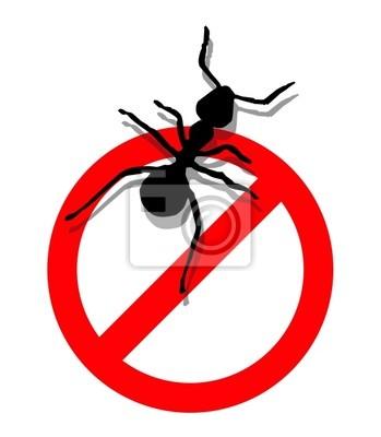 Zabrania się wprowadzić mrówki