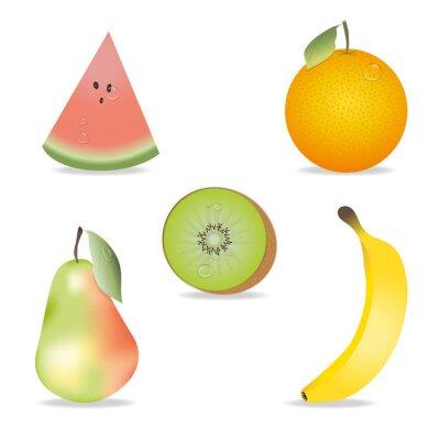 Naklejka Zbiór owoców