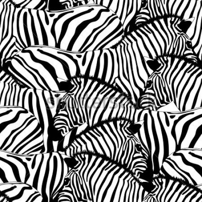 Naklejka Zebra seamless pattern.Savannah Animal ornament. Wild animal texture. Striped black and white. design trendy fabric texture, illustration.