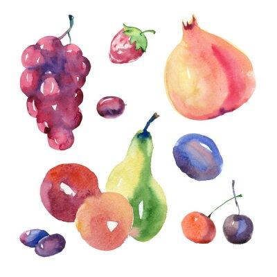Naklejka Zestaw akwareli owoce