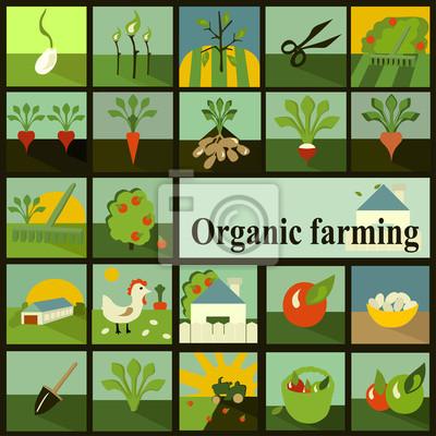 Zestaw ikon. Rolnictwo ekologiczne