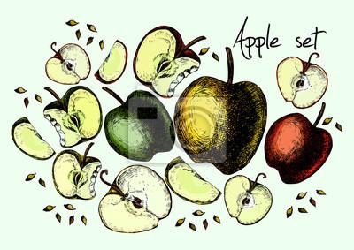 Zestaw jabłek rysunkowych
