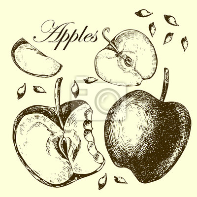 Zestaw jabłek rysunkowych. Ilustracje.