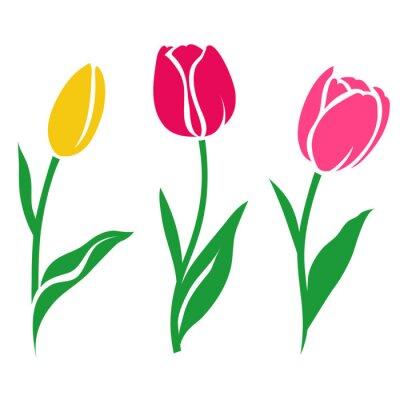 Naklejka Zestaw kolorowe tulipan sylweta. Ilustracji wektorowych. Kolekcja kwiatów ozdobnych