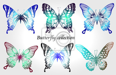Zestaw kolorowy motyl. Kolekcja owadów szkic do projektowania i scrapbooking, wektor wyciągnąć rękę sylwetkę, izolowane