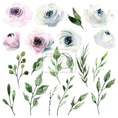 Zestaw kwiatów akwarela, różowe i białe róże. Ilustracja na zaproszenie na ślub, kartkę z życzeniami, plakat, ulotka, projekt transparentu. Kwiatowy obraz akwarela na białym tle.