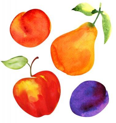 Naklejka Zestaw owoców. Jabłka, gruszki, śliwki i morele.