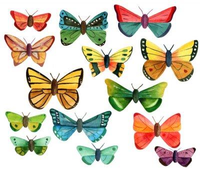 Naklejka Zestaw wielu różnych motyli akwarela na białym tle