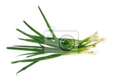 Naklejka zielona cebula