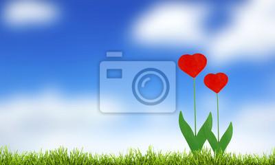 zielona trawa i błękitne niebo z slowers serca