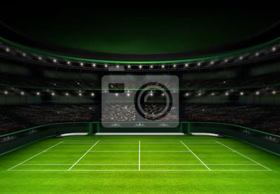 zielona trawa tenisa stadion wieczornym niebie