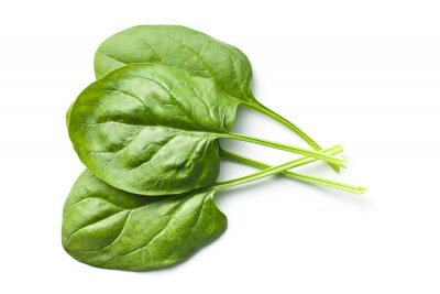Naklejka zielone liście szpinaku