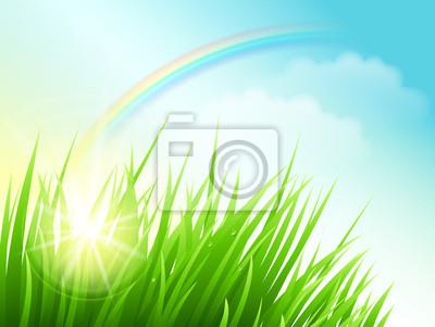 Naklejka Zielone pole z słońce i tęcza. Vector Background