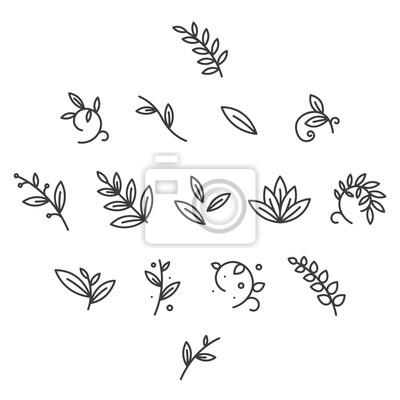 Zielony Kwiatowy Dekoracyjne Oddział Liście Roślin Linia Proste Ikona Skoku Ikona Piktogramu