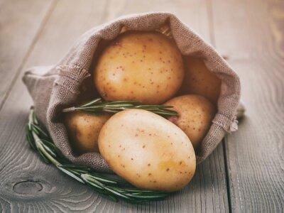 Naklejka ziemniaki dziecka w torbie worek z rozmarynem na stole drewna, vintage stonowanych