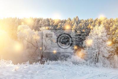 Zima natury krajobraz z rozjarzonymi magicznymi światłami. Świecące płatki śniegu spadają na śnieżne drzewa w porannym słońcu. Boże Narodzenie tło. Święta Bożego Narodzenia w grudniu. Drzewa i rośliny