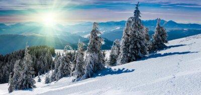 Naklejka Zima panoramiczny krajobraz w górach. Pokryte śniegiem drzewa i górskie szczyty w oddali.