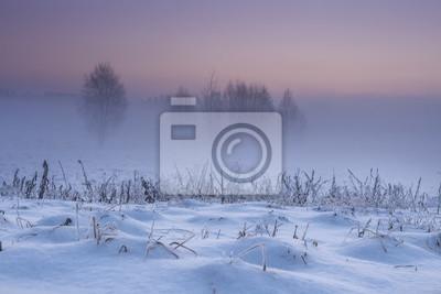 Zimowy krajobraz o świcie. Śnieżna zimowa natura wczesnym rankiem. Boże Narodzenie tło. Mglisty i mroźny krajobraz z czystym niebem. Drzewa i rośliny pokryte szronem. Naturalna zima w grudniu