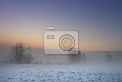 Zimowy krajobraz przyrody. Boże Narodzenie tło. Grudniowa natura o świcie. Drzewa i rośliny we mgle. Ziemia pokryta śniegiem pod mroźnym niebem.