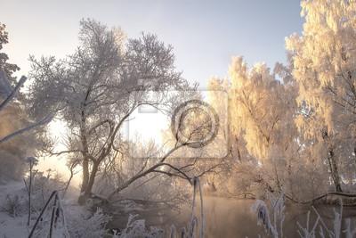 Zimowy. Śnieżni drzewa z szronem na gałąź na brzeg rzeki w ranku świetle słonecznym. Boże Narodzenie tło. Mroźna scena naturalna. Zimowy krajobraz