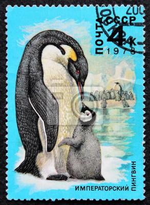 znaczek pocztowy ZSRR 1978 cesarz Pingwin Moskwa ZSRR niebieskie tło