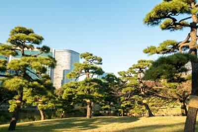 Naklejka Zobacz Tokio miasta z parku