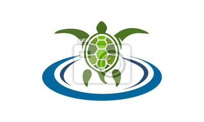 żółw wektora