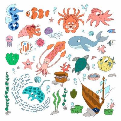 Zwierzęta świata morskiego