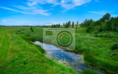 Obraz A narrow water canal, river, stream going through a green grass field landscape into bright summer clouds. Rural, countryside landscape