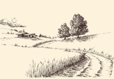 Obraz A path to a farm landscape hand drawing