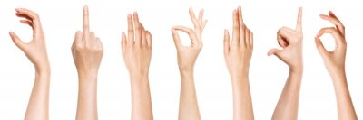 Obraz A set of hand gesture isolated on white.