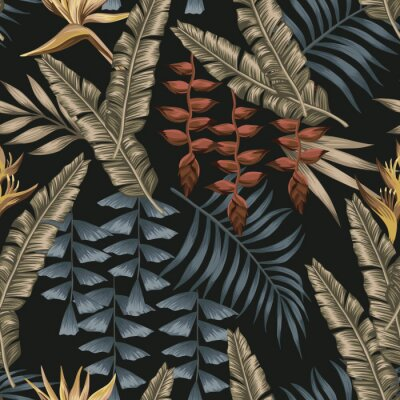 Obraz Abstract color tropical seamless black background