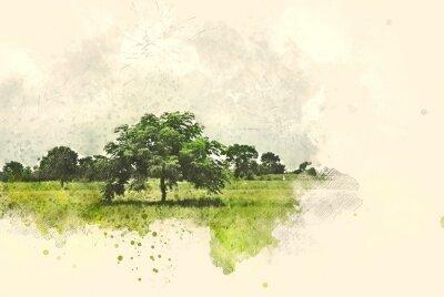 Obraz Abstrakcjonistyczny drzewa i pola krajobraz na akwarela obrazu ilustracyjnym tle.