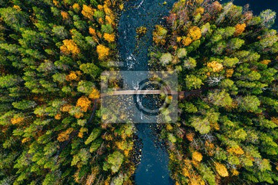 Obraz Aerial view of fast river flow through the rocks and colorful forest. Autumn in Finland